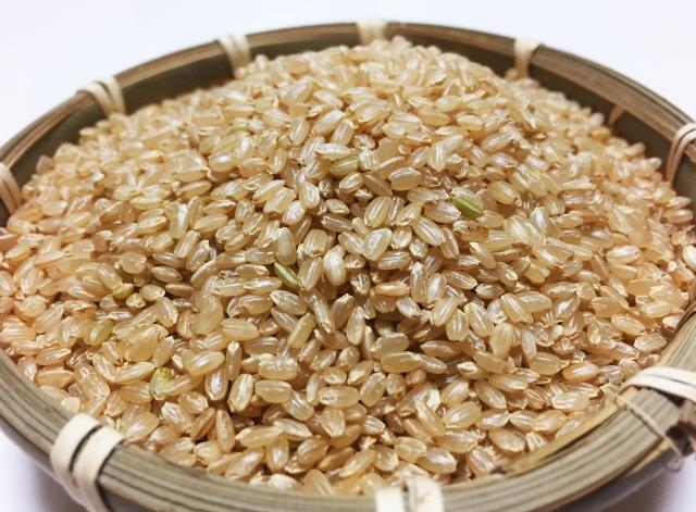 お米の賞味期限はいつまで?美味しく食べられる期間と選び方を解説!