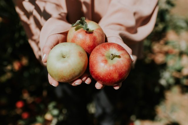 りんごの保存