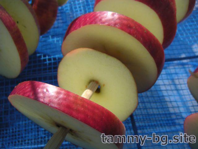 干しりんごのイメージ