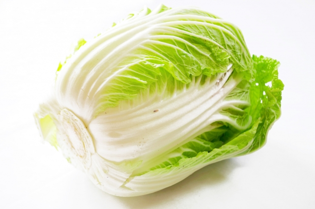 白菜を冷凍するときは、洗う? 洗わない? 冷凍のコツや使い方は?