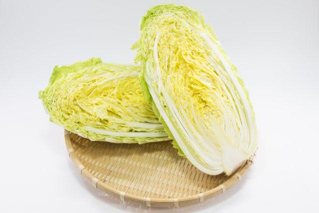 白菜はどこから使う?外側と内側で違いはあるの?味を落さない方法は?